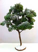 Picture of the finished model tree, sprayed with snow
