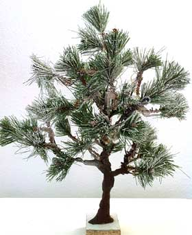 Image of wire model pine tree, with pieces of artificial Christmas tree branches glued in place