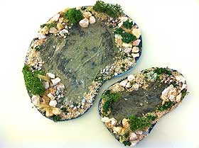 Picture of two completed model ponds, landscaped with reindeer moss and small stones