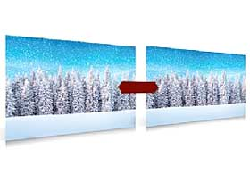 Photo of the Christmas Winter Forest background posters, for sale at many outlets